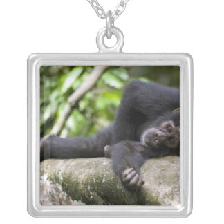 Africa, Uganda, Kibale Forest Reserve, Young Silver Plated Necklace