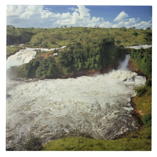 Africa, Uganda, Murchison Falls NP. The frothy Large Square Tile