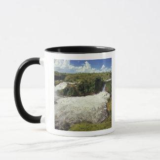 Africa, Uganda, Murchison Falls NP. The frothy Mug
