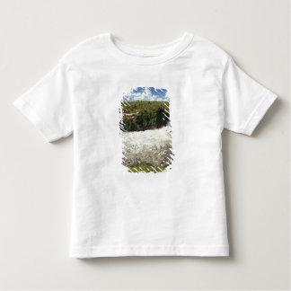 Africa, Uganda, Murchison Falls NP. The frothy Shirt