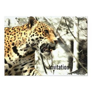 africa wildlife safari animal Wild Leopard Card