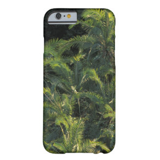 Africa, Zambia, Mosi-Oa-Tunya National Park, Barely There iPhone 6 Case