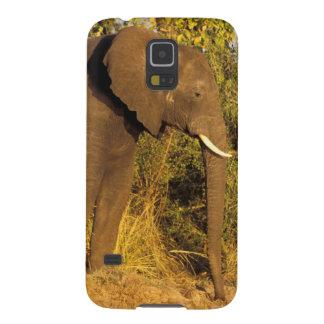 Africa, Zimbabwe, Victoria Falls National Park. Galaxy S5 Case