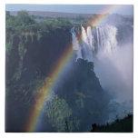 Africa, Zimbabwe. Victoria Falls Tile