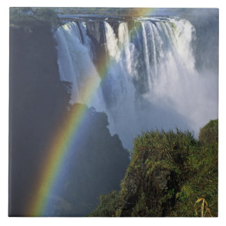 Africa, Zimbabwe, Victoria Falls Tile