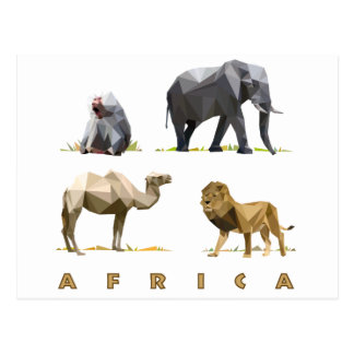 african animals lion, elephant, camel, baboon post cards