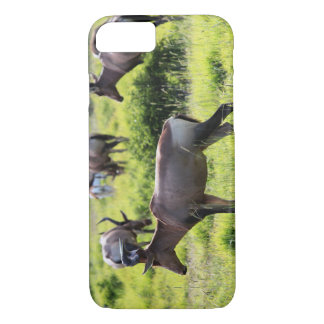 African Antelope on Safari in South Africa iPhone 7 Case