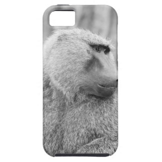 African baboon iPhone 5 covers