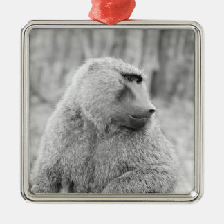 African baboon Silver-Colored square decoration