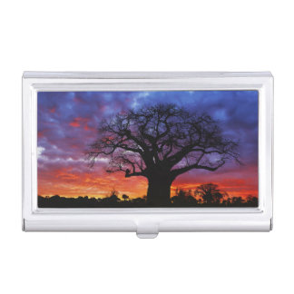 African baobab tree, Adansonia digitata, 2 Business Card Holder