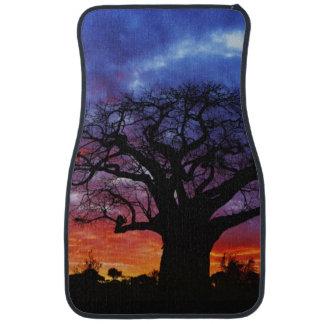 African baobab tree, Adansonia digitata, 2 Car Mat