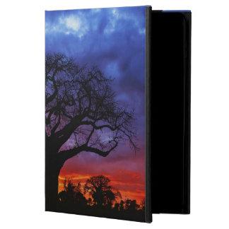 African baobab tree, Adansonia digitata 2 iPad Air Cover