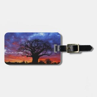 African baobab tree, Adansonia digitata, 2 Luggage Tag