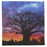 African baobab tree, Adansonia digitata, 2 Cloth Napkins