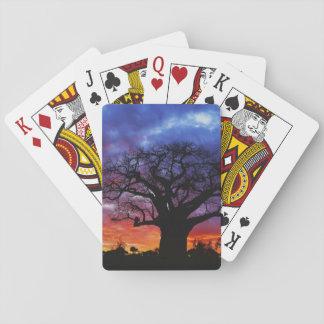 African baobab tree, Adansonia digitata, 2 Playing Cards