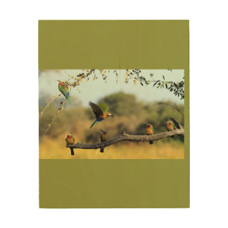 African Bee Eater will be a beautiful display. Wood Wall Art