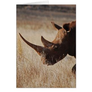 African black rhino with big horns card