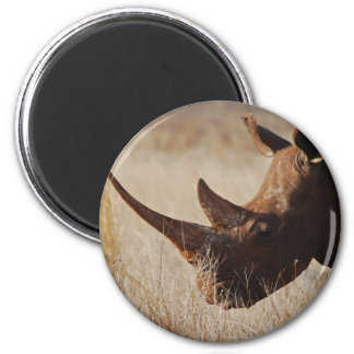 African black rhino with big horns magnet