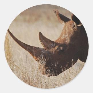 African black rhino with big horns round sticker