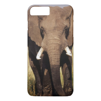 African Bush Elephant iPhone 8 Plus/7 Plus Case