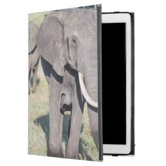 """African Bush Elephant (Loxodonta Africana) 2 iPad Pro 12.9"""" Case"""