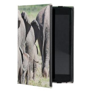 African Bush Elephant (Loxodonta Africana) 4 Cover For iPad Mini