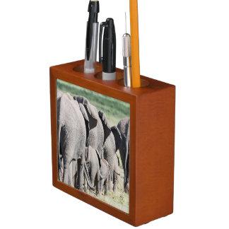 African Bush Elephant (Loxodonta Africana) 4 Desk Organiser
