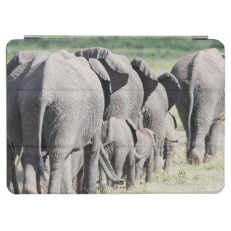 African Bush Elephant (Loxodonta Africana) 4 iPad Air Cover