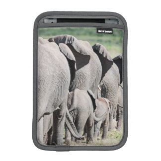 African Bush Elephant (Loxodonta Africana) 4 iPad Mini Sleeve