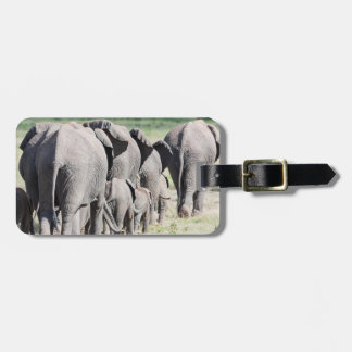 African Bush Elephant Loxodonta Africana 4 Tags For Bags