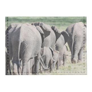 African Bush Elephant (Loxodonta Africana) 4 Tyvek® Card Wallet