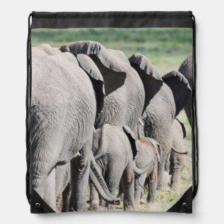 African Bush Elephant Loxodonta Africana 4 Backpack