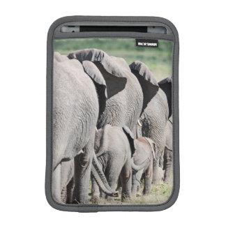 African Bush Elephant (Loxodonta Africana) 4 Sleeve For iPad Mini