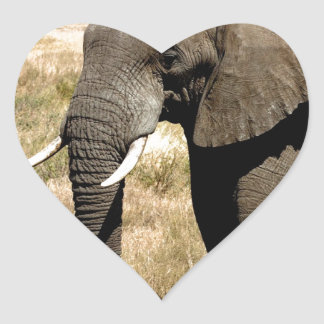 African Bush Elephant  moving to success Sticker