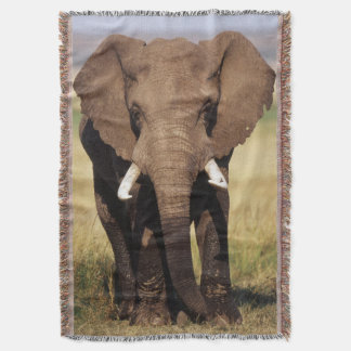 African Bush Elephant Throw Blanket