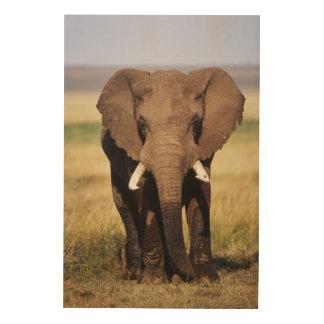 African Bush Elephant Wood Wall Art