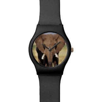 African Bush Elephant Wristwatch