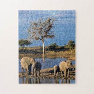 African Bush Elephants (Loxodonta Africana) Jigsaw Puzzle