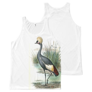 African Crane Bird Wildlife Animal Top