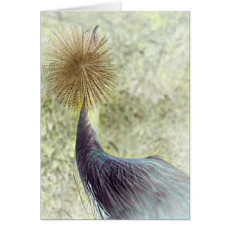 african crowned crane - invert note card