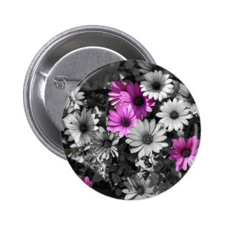 African Daisies BW Floral Button