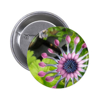 African daisy 6 cm round badge