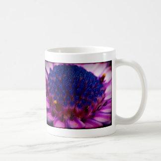 African Daisy Blossom Mug