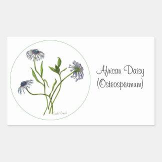 African Daisy Botanical Seal Rectangular Stickers