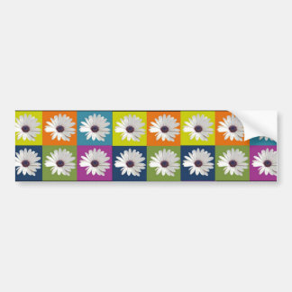 African Daisy Collage Bumper Sticker