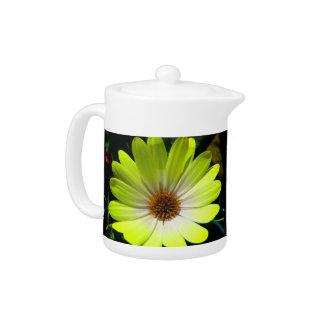 African Daisy Fluorescent Yellow Teapot