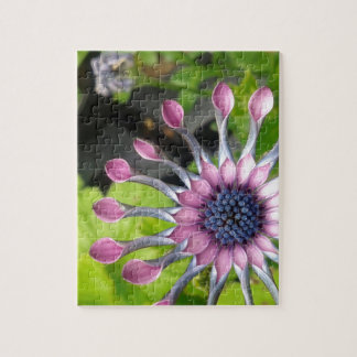 African daisy jigsaw puzzle