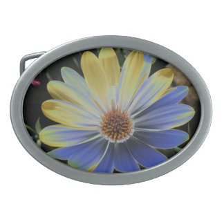 African Daisy Lapis and Gold Belt Buckle
