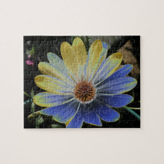 African Daisy Lapis and Gold Puzzle