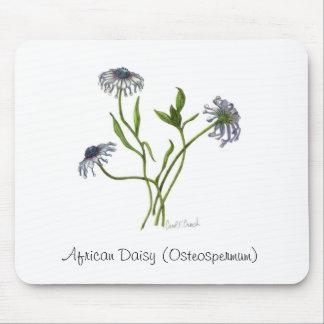African Daisy (Osteospermum) Mousepad